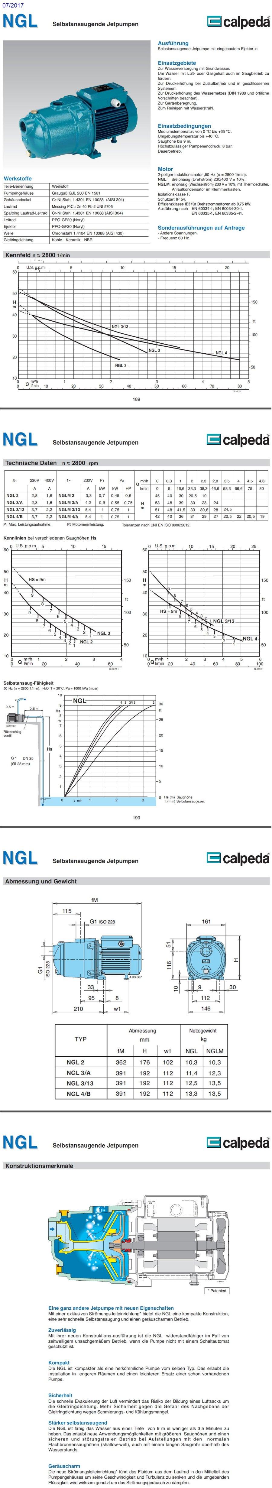 Selbstansaugende Jetpumpe CALPEDA NGL4m//A 0,75kW 1Hp Einzelphase 230V NGLM